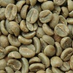 Green Beans Coffee Roasts