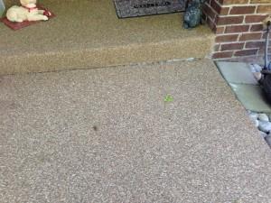 Pebble Epoxy Flooring Pebble Tile Should You Use It